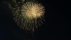 piękny kolorowy fajerwerk Świętowanie zdjęcie wideo