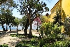 Piękny koloru żółtego dom z kolorowym ogródem w Lisbon obrazy royalty free