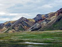 Piękny krajobraz Landmannalaugar geotermiczny teren z rzeką, zielonej trawy polem i rhyolite górami, Iceland fotografia stock