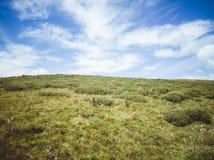 Piękny krajobraz natura zdjęcia royalty free