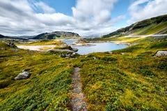 Piękny krajobraz w Norwegia z wycieczkuje śladem prowadzi przez doliny z zieloną trawą i kamieniami do błękitnego jeziora w mo Fotografia Royalty Free