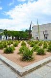 Piękny krajobraz w Oaxaca zdjęcia royalty free