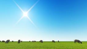 Piękny krajobraz - wzgórza zakrywający zieloną trawą ilustracja wektor