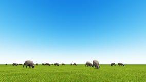 Piękny krajobraz - wzgórza zakrywający zieloną trawą royalty ilustracja