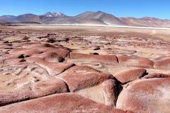 Piękny krajobraz z czerwonymi skałami Obraz Stock