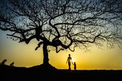Piękny krajobraz z drzewo sylwetką przy zmierzchem z dzieckiem trzyma jej ojciec rękę pod drzewem zdjęcie royalty free