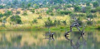 Piękny krajobraz z tamą i fiszorkiem Obrazy Royalty Free