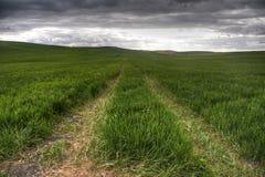 Piękny krajobraz z ziemią uprawną w Andalusia Obrazy Stock