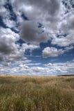 Piękny krajobraz z ziemią uprawną w Andalusia Zdjęcia Stock