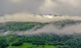 Piękny krajobrazu, scenerii widok Norwegia i, zielona sceneria wzgórza i góra stronniczo zakrywający z śniegiem Zdjęcia Royalty Free