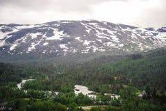 Piękny krajobrazu, scenerii widok Norwegia i, zielona sceneria wzgórza i góra stronniczo zakrywający z śniegiem Fotografia Stock