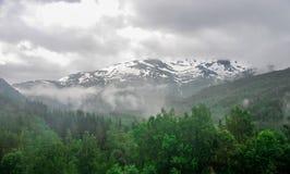 Piękny krajobrazu, scenerii widok Norwegia i, zielona sceneria wzgórza i góra stronniczo zakrywający z śniegiem Zdjęcie Royalty Free