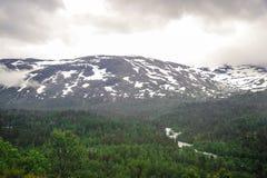 Piękny krajobrazu, scenerii widok Norwegia i, zielona sceneria wzgórza i góra stronniczo zakrywający z śniegiem Obraz Stock