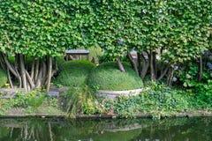 Piękny kształtujący teren park na nabrzeżu w zieleni z boxwood boxwood ulistnieniem i krzakach w Bruksela obrazy stock