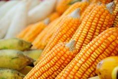 piękny kukurydzanego ucho kolor żółty Obrazy Stock