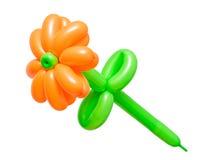 Piękny kwiat od balonów odizolowywających na białym tle Fotografia Stock