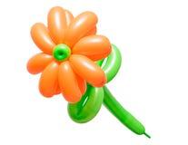 Piękny kwiat od balonów odizolowywających na białym tle Zdjęcia Royalty Free