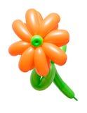 Piękny kwiat od balonów odizolowywających na białym tle Fotografia Royalty Free