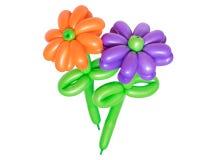 Piękny kwiat od balonów odizolowywających na białym tle Obrazy Royalty Free
