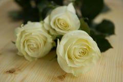 Piękny kwiatu skład Zdjęcia Stock