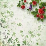 Piękny kwiecisty abstrakcjonistyczny tło Fotografia Royalty Free