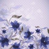 Piękny kwiecisty tło Obraz Stock
