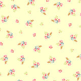Piękny kwiecisty wzór z małymi kwiatami Fotografia Stock