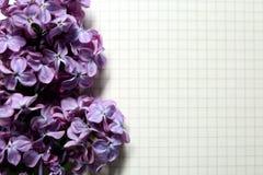 Piękny kwitnie bez na prześcieradle papier zdjęcie stock