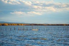 Piękny L ` Albufera jeziorny widok przy zmierzchem zdjęcie stock