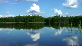 Piękny lasowy jezioro z spokój wodą w sosnowym lasowym Cudownym krajobrazie zbiory