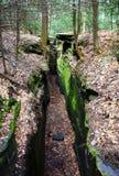Piękny lasu krajobraz z dużym zielonym mechatym jarem na wypustach przechodzi w Cuyahoga dolinie blisko Cleveland, Ohio, usa obraz royalty free