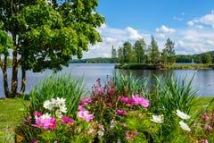 Piękny lato krajobraz na jeziorze z kwiatami na przedpolu i zdjęcie stock
