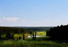 Piękny lato krajobraz z polem i kwiatami Zielony krajobraz zaświecał słońcem przy zmierzchem europejczycy zdjęcie stock