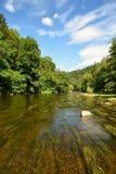 Piękny lato krajobraz z rzeką, lasem, słońcem i niebieskimi niebami, Naturalny tło Zdjęcie Royalty Free
