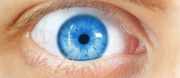Piękny ludzki oko, makro-, zakończenie w górę błękitnego, żółty, brąz, zdjęcie royalty free