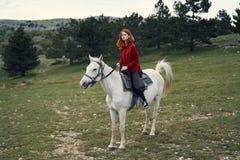 Piękny młodej kobiety odprowadzenie w naturze z koniem Zdjęcia Stock
