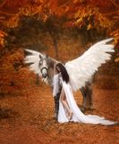 Piękny, młody elf, chodzi z jednorożec Jest ubranym nieprawdopodobnego światło, biel suknia Dziewczyna kłama na koniu Artisti zdjęcie royalty free
