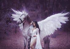 Piękny, młody elf, chodzi z jednorożec Jest ubranym nieprawdopodobnego światło, biel suknia Sztuki hotography fotografia royalty free