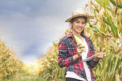 Piękny młody rolnik trzyma czeka na kukurydzanym fedrunku Agricultura zdjęcie stock