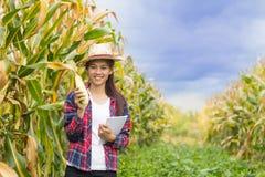 Piękny młody rolnik trzyma czeka na kukurydzanym fedrunku Agricultura fotografia stock