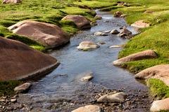 Piękny mały strumień Zdjęcie Royalty Free