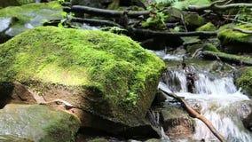 Piękny mały strumyk i kamienie z zielonym mech zbiory wideo
