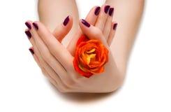 Piękny manicure Zdjęcie Stock