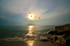 Piękny markotny wschód słońca obrazy royalty free