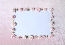 Piękny menchii róża na białym papierze Zdjęcie Stock