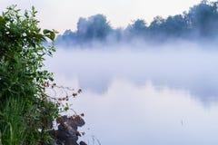 Piękny mgłowy jezioro wcześnie w ranku, pierwszy promienie słońce Magii świt, cisza i calmness, Pojęcie sezony obrazy royalty free