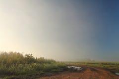Piękny mgłowy ranek na zewnątrz miasta w lecie Obraz Stock