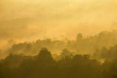 Piękny mglisty wschód słońca na tropikalnej lasowej mgle w Indonezja fotografia stock