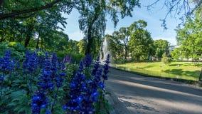 Piękny miasto park z małym kanałem w Ryskim Obraz Royalty Free