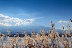 Piękny miejsce wokoło jeziornego Kawaguchi z górą Fuji w backgro zdjęcie royalty free